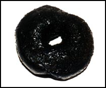 Mm.  Charcoal donut with charcoal filling.