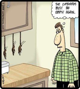 cockroach suicide