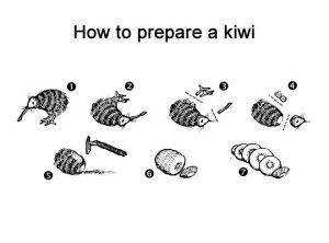 kiwi prep