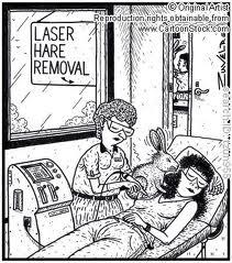 laser hare